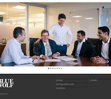 Blue Wolf Capital Partners | LoanNEXXUS